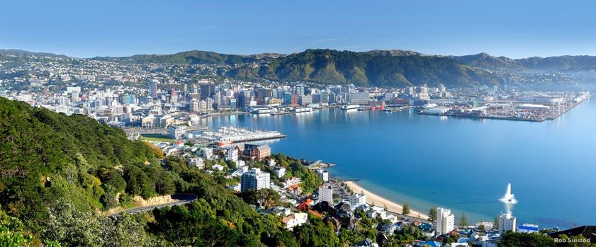 Wellington from Mount Victoria. Image credit: Rob Suisted