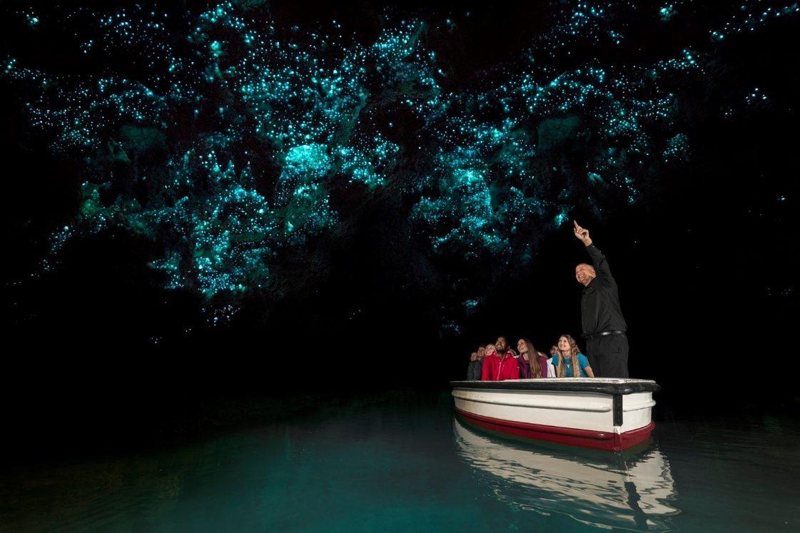 Waitomo glow-worm caves. Image credit: Corin Walker Bain