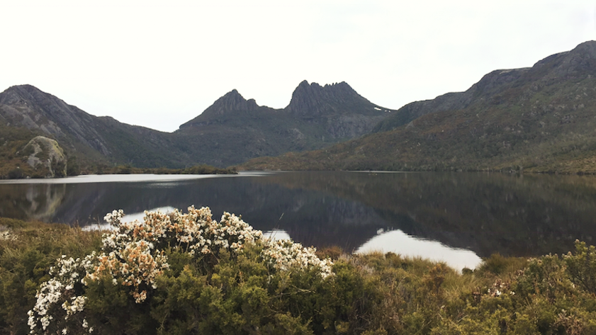 Cradle Mountain. Credit: Charlotte Wadsworth.