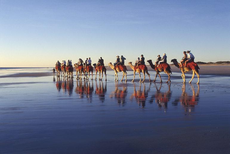 Broome Camel Rides. Credit: Tourism Australia.