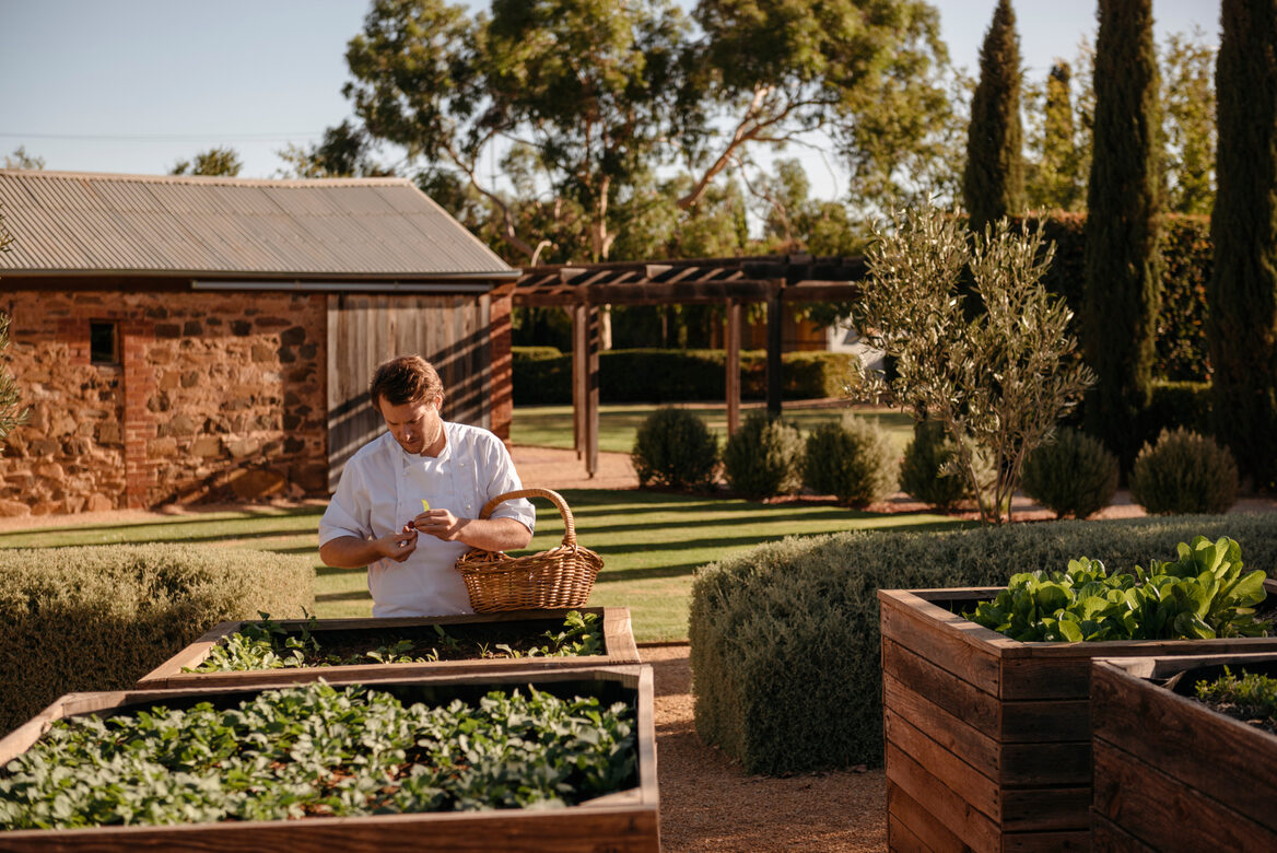Hentley Farm-Image by Barossa Grape & Wine Association