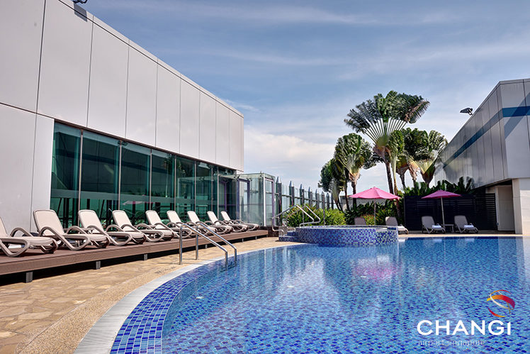 Image: Singapore Changi Terminal 1 Rooftop Swimming Pool. Credit: Singapore Changi Airport