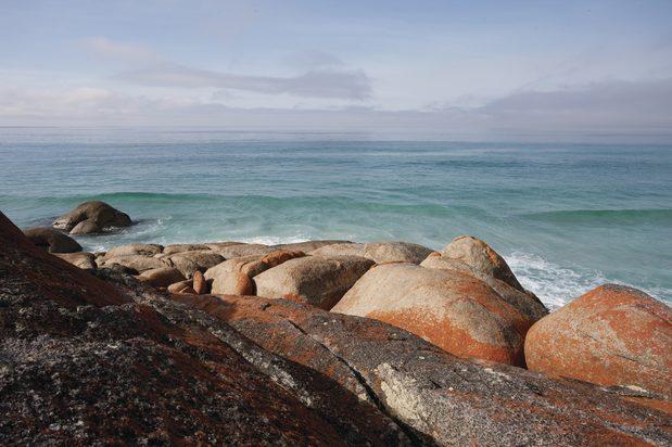 (Bay of Fires, Tasmania. Image credit: Tourism Australia)