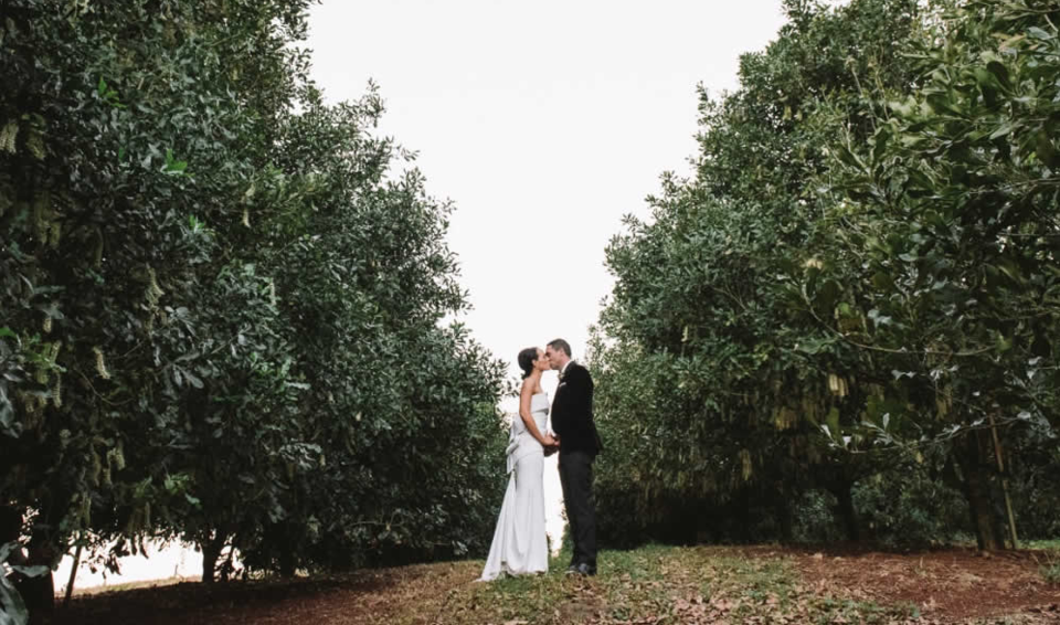 Wedded bliss... say 'I do' in a stunning macadamia orchard