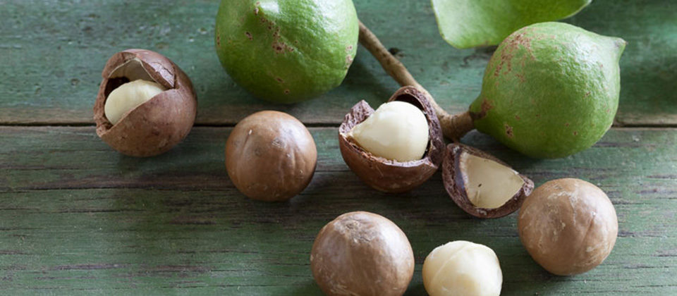 What's trending - clean eating with macadamias