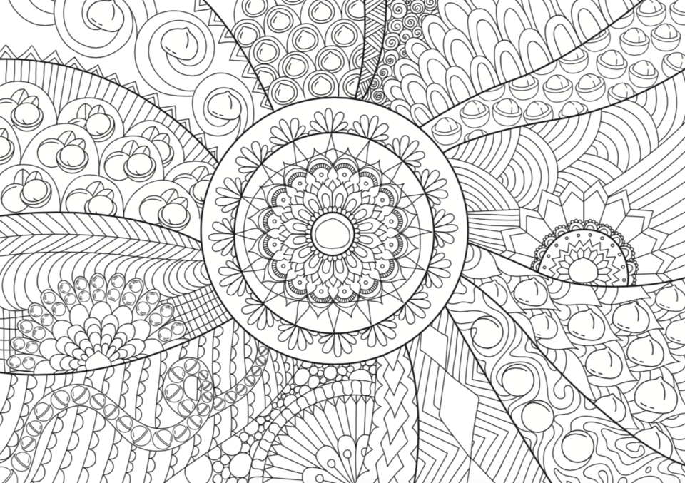 Free colouring download from Australian Macadamias