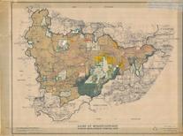 IDO maps WSC
