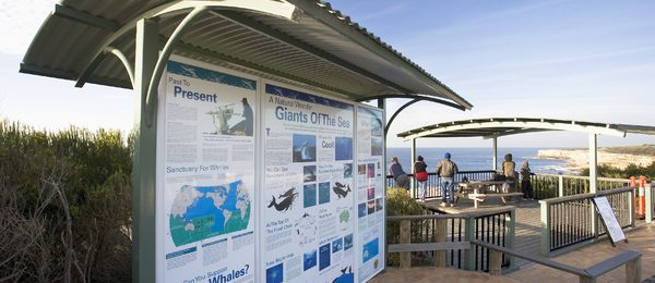 Cape Solander whale watching platform
