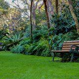 EG Waterhouse National Camellia Gardens