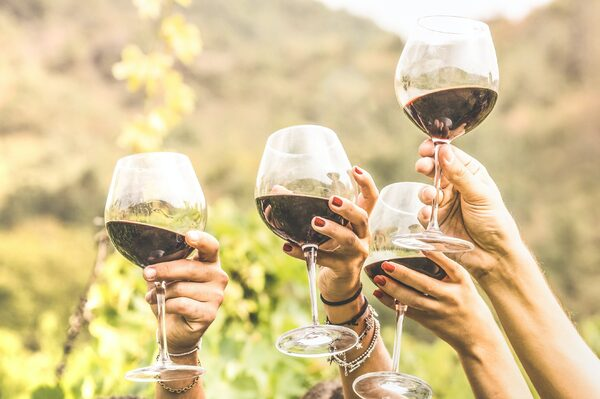 Wine Tours of the South Coast