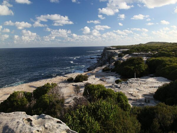Cape Solander Kamay Botany Bay National Park Photo Andy Richards