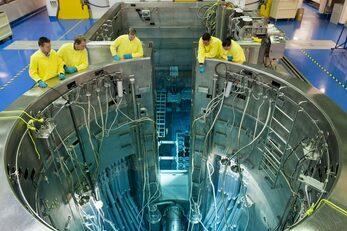 OPAL research reactor pool