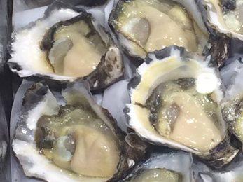 Gary 039 s Seafood
