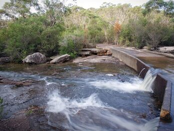 Water flows over concrete Battery Causeway against a backdrop of bushland in Heathcote National Park