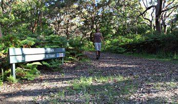 Banks Solander track Kamay Botany Bay National Park Photo Andy Richards