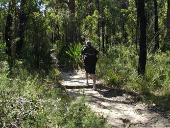 Bushwalker on the Karloo walking track Photo Andy Richards
