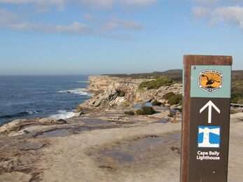 Park sign pointing to Cape Baily lighthouse set against a vista of ocean rugged rocky coastline