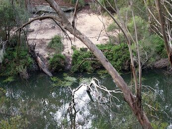 Mirang Pool campground in Heathcote National Park Photo Nick Cubbin DPIE